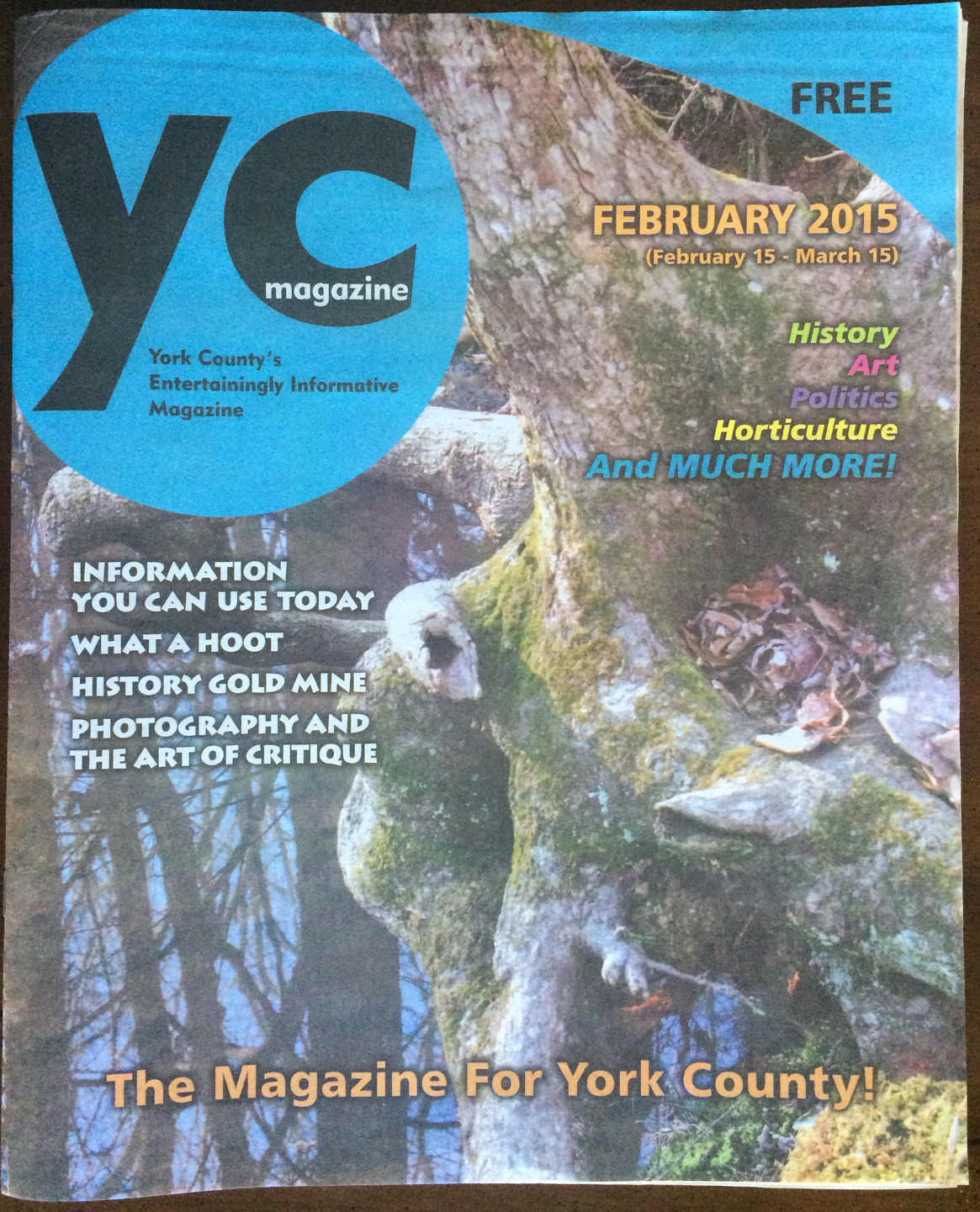 YC Magazine FEB 2015 Cover